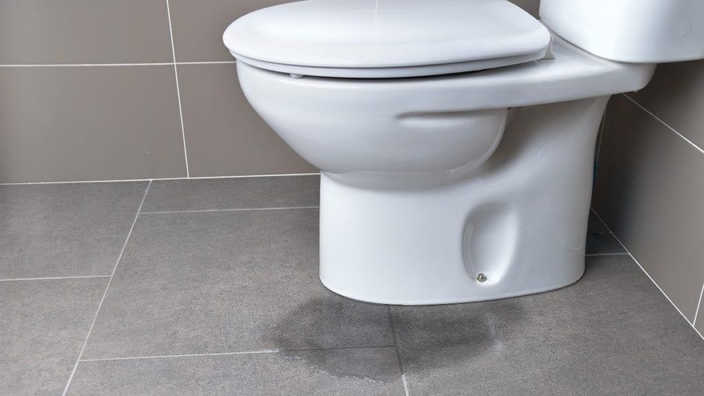 adeedo-leakytoilet