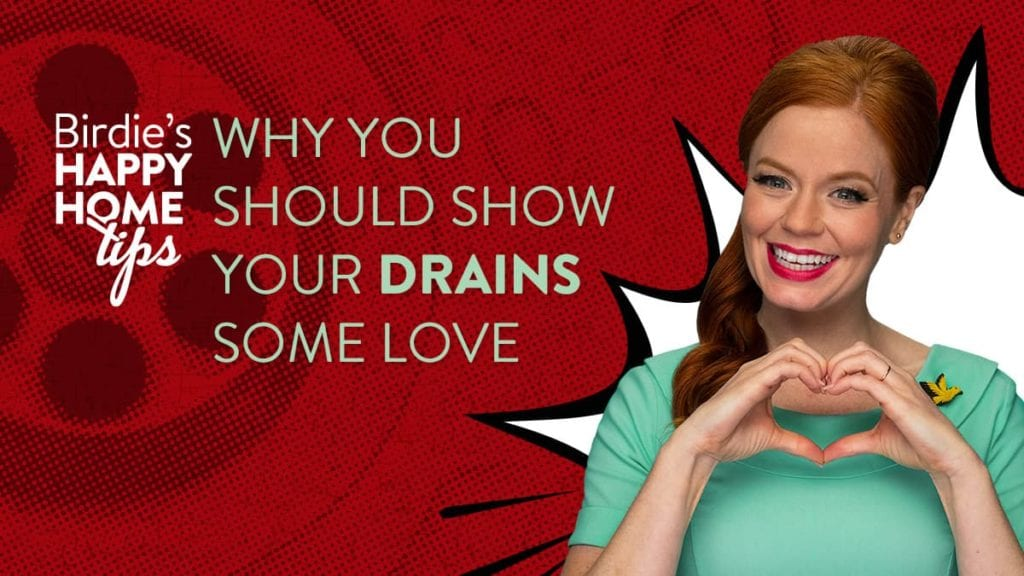 Show Drains Love Birdie's Tips